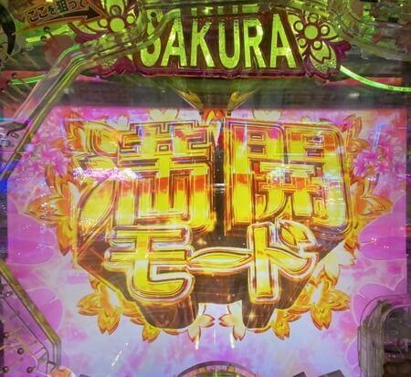AKB桜ライト6